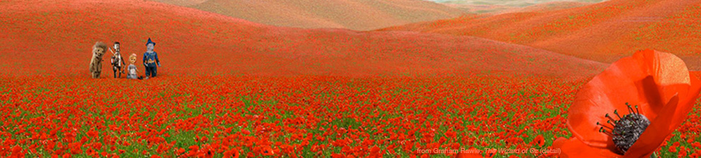 Detail from poppies image in Graham Rawle's book the Wizard of Oz