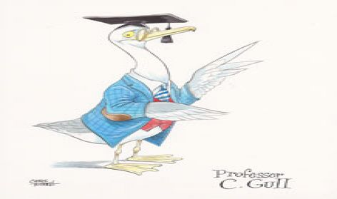 Professor C Gull