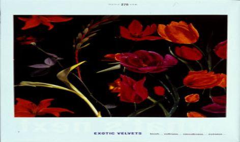 Exotic Velvets
