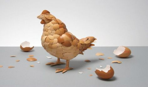 Which cameWhat came first? Chicken made of eggshells