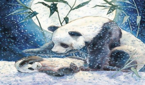 Panda by Cliff Wright