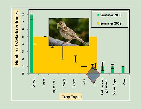number-of-summer-skylark-territories-in-different-crops