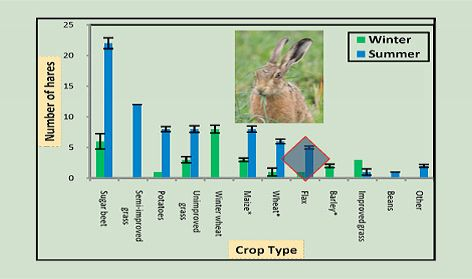 number-of-hares-recorded-in-different-crops.jpg