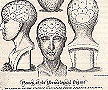 Names of the Phrenological Organs: Dissertation by Rosanna Wood University of Brighton