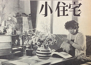 Woman seated in Korean-designed domestic interior 1975