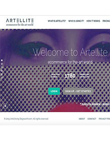 front page of website Artelite